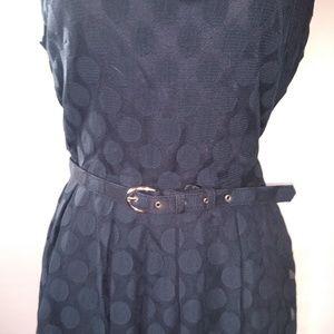 Alfani Dresses - EUC BLUE POLKA DOT LACE DRESS